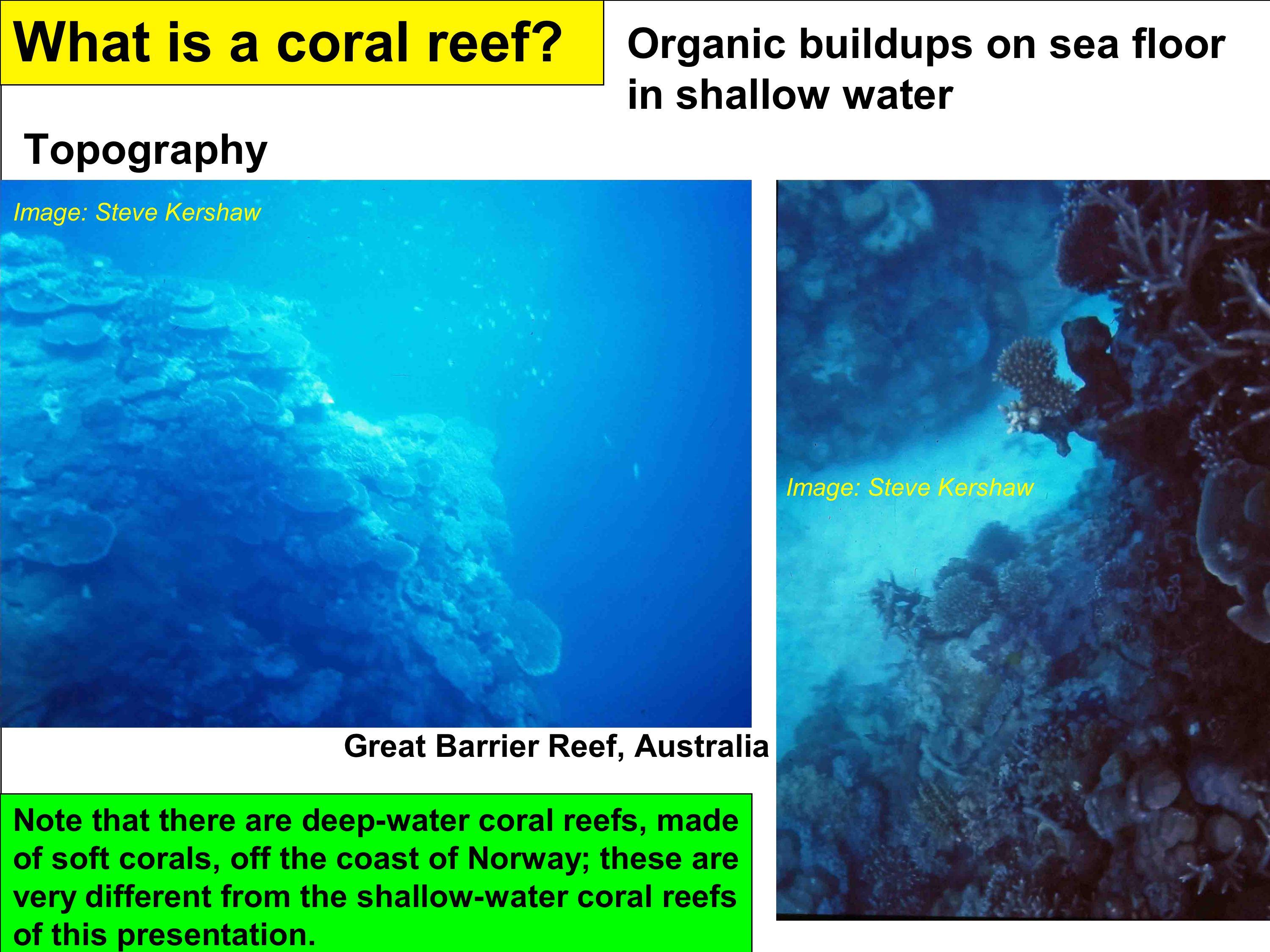 Fossil reefs